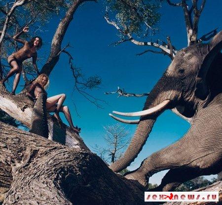 Календарь Pirelli на 2009 год был снят в Африке