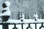 Петербуржцам раздадут лопаты для уборки снега