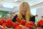 В Москве ожидают теплую погоду на 8 марта