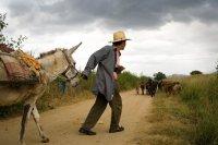 Жители Мексики подают иск в Международный Уголовный Суд на своего президента