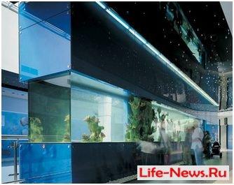 Лучшие аквариумы мира