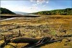 Из-за засухи в Башкирии досрочно завершилась навигация