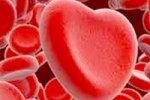 Группа крови определяет сексуальность человека