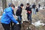 Хабаровск: город станет садом