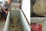 За фотографии замороженного пришельца китаец угодил в тюрьму