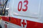 В Томской области нашли двух пропавших в мальчиков
