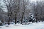 В Волгоградскую область вернулась зима