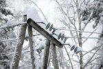 Стихия оставила на Среднем и Южном Урале без электроснабжения более 100 населенных пунктов