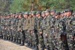 Украина, Литва и Польша создадут совместную армейскую бригаду
