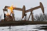 Младший Абрамович открыл новое месторождение нефти