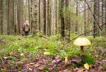 В Челябинской области пенсионерка 78 лет трое суток бродила по лесу, пока ее не нашли спасатели