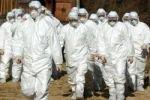 Китайскому городу угрожает эпидемия чумы