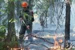 Борьба с пожарами идет в Тверской области