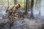 К концу недели Подмосковье будет накрыто дымом от пожаров, полыхающих в Тверской области