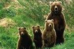 Семейство из нацпарка «Таганай» на Южном Урале