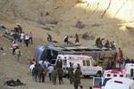 В Египте столкнулись 2 автобуса. Есть погибшие
