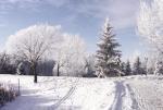 Росгидромет предупреждает: зима будет настоящей