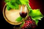 Виноград и вино полезны