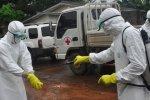 В Америке разработаны новые тесты для выявления лихорадки Эболы