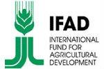 Россия войдет в Международный фонд сельхозразвития