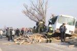 В Нижегородской области автобус завалило бревнами с лесовоза