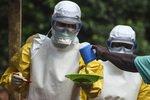 Россия отправит в Гвинею медиков для борьбы с Эболой