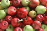 Откуда сельхозпродукция со швейцарскими сертификатами?