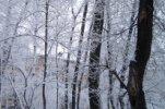 В Иркутской области два школьника по пути домой обморозились, один замерз