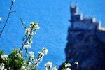 Крым на майские праздники готов принять 125 тысяч отдыхающих