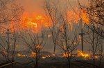 В понедельник пожары в Хакасии удалось победить