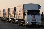 Очередной гуманитарный конвой доставил груз в Донбасс