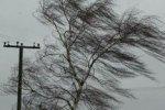 В Амурской области ураганный ветер срывает крыши, есть жертвы