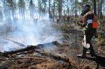 В Сибири площадь лесных пожаров сократить не удается