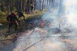 Площадь пожаров в Сибири не уменьшается