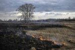 Степной пожар в Оренбургской области тушат МЧС и жители села Горьковское