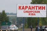 Вспышка сибирской язвы на Ямале
