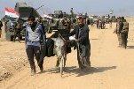 Недалеко от иракского города Мосула обнаружено место массовых казней, учиненных ИГ