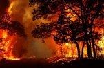 На Дальнем Востоке и в Сибири горят леса и села