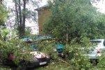 Разгул стихии в Новгородской области