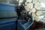 ДТП в Иркутской области – маршрутка столкнулась с лесовозом