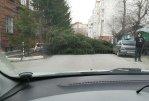 В Омске на смену пыльной буре и урагану пришли осадки с холодом
