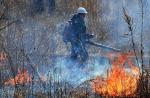 Горят леса Красноярского края, страдает Сибирь